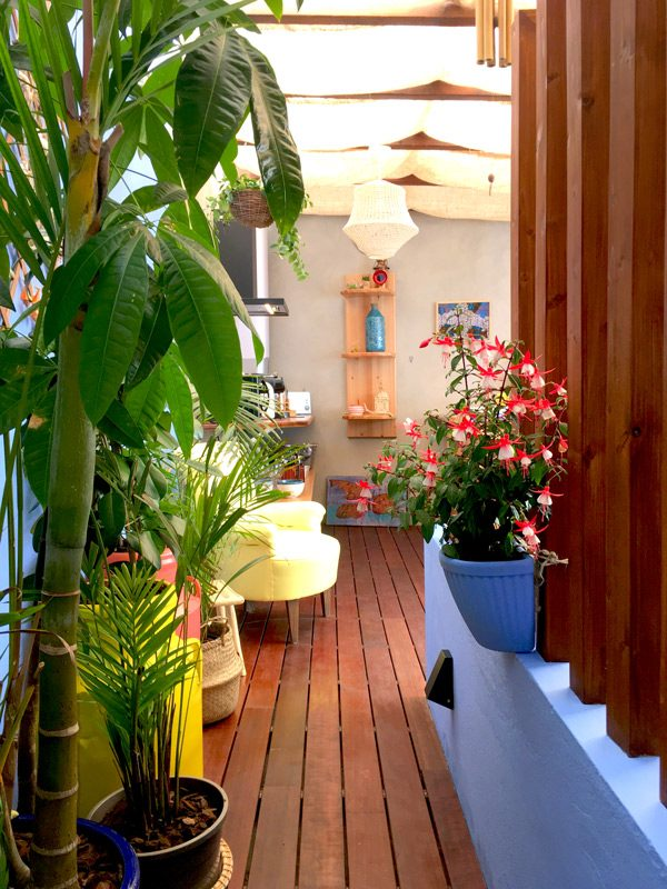 Private indoor tropical garden Azores Stays