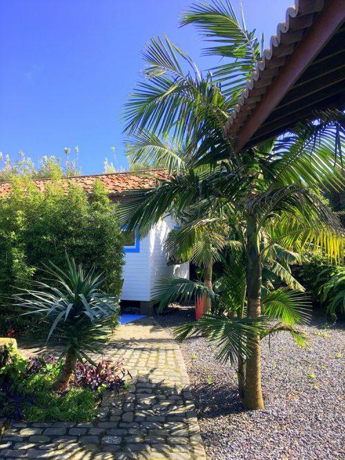 tropical surroundings Bananas Lodge